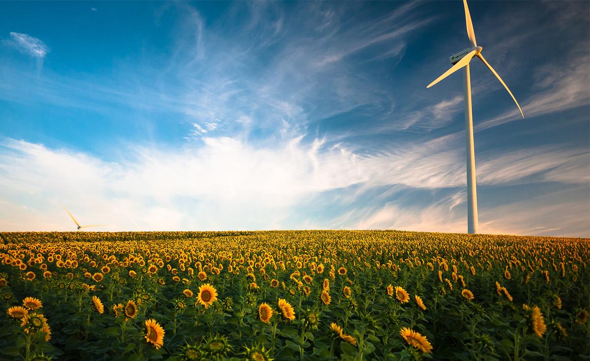 A más consumo energético, ¿más desarrollo económico?