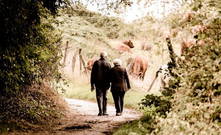 Importante avance contra el envejecimiento liderado por científicos españoles