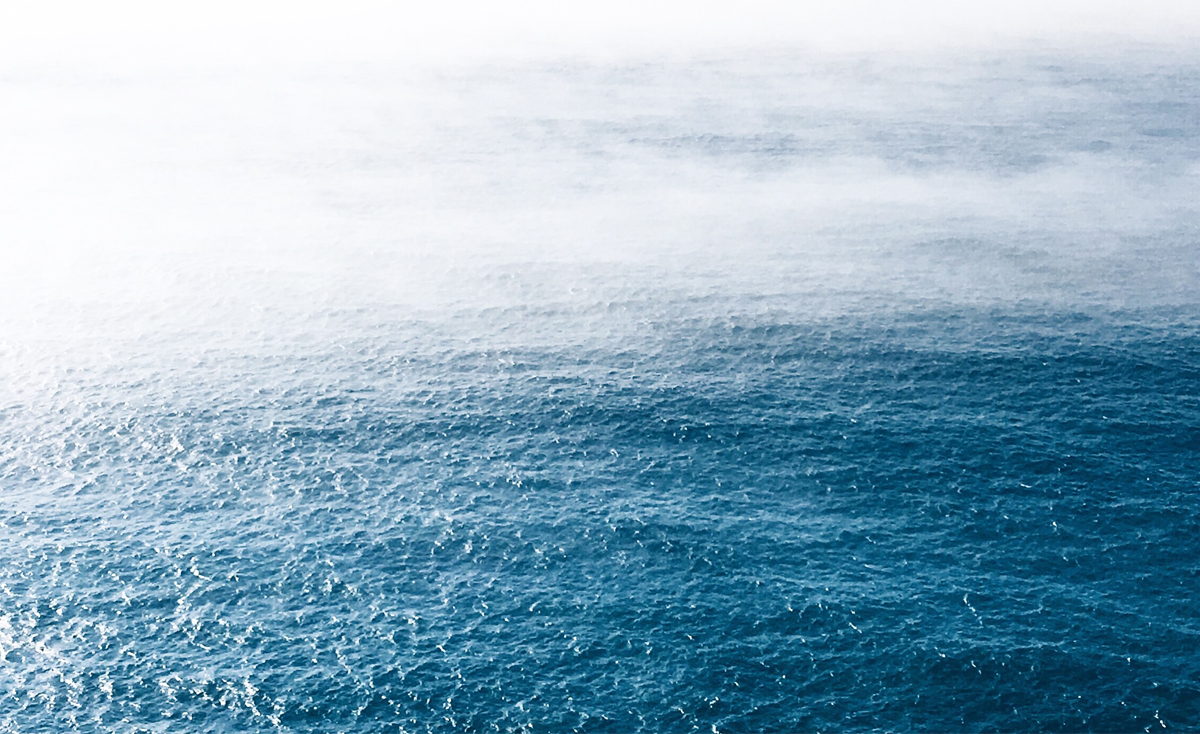La estrategia del océano azul, o cómo no volverse irrelevante