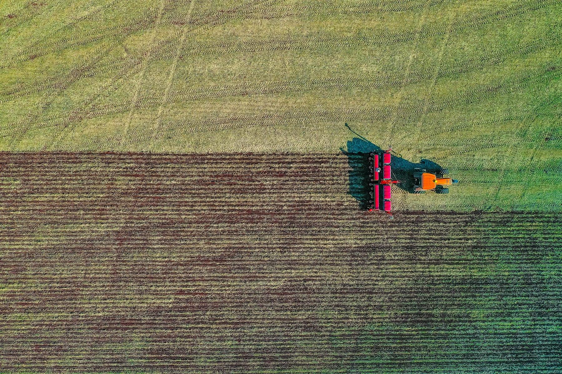 La edición genética adelanta por la derecha a la naturaleza: es el momento de crear mejores cultivos